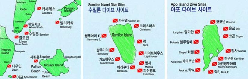 [스쿠버다이빙] 환상의 섬, 아포(Apo Island)