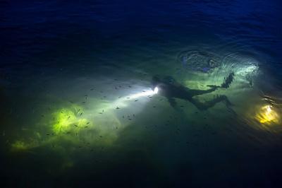 [스쿠버다이빙] 필리핀 다이빙 두번째. (교통, 다이브센터